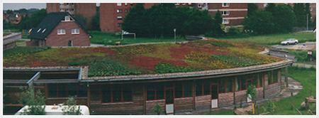 Green roof - Nordisk Perlite